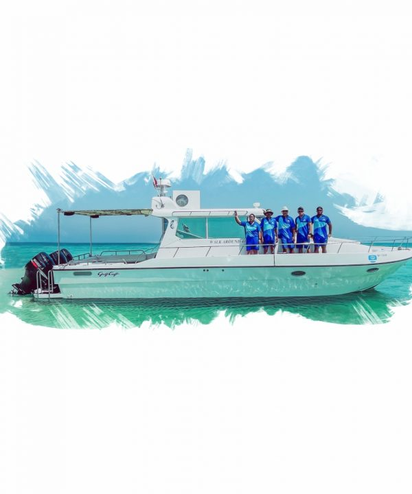Star-Marine1